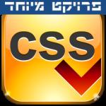 CSS ווורדפרס