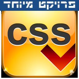 וורדפרס ו-CSS